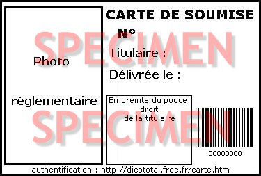 Rue Bricabrac, bdsm, code barre, soumise