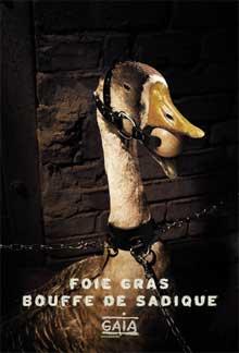 GAIA, Rue bricabrac, bdsm, foie gras, gavage
