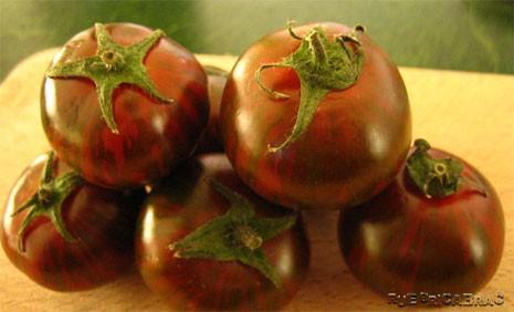 Rue Bricabrac, bdsm, cuisine, tomates zébrées